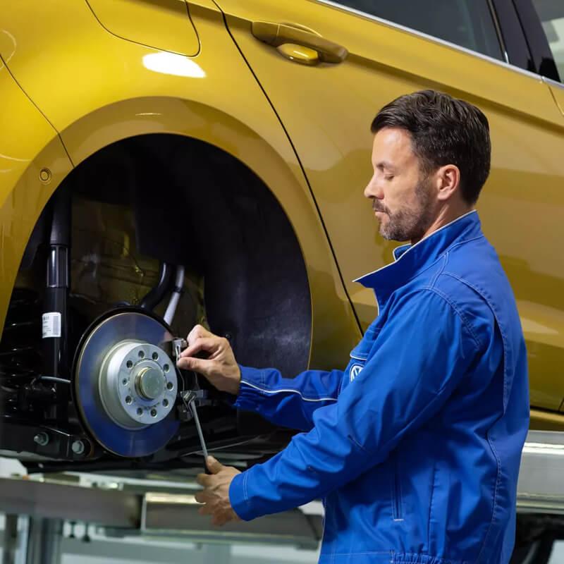 Gnisia-antallaktika-VW-frena-800x800